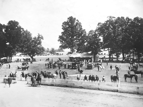 1920s Harness Races