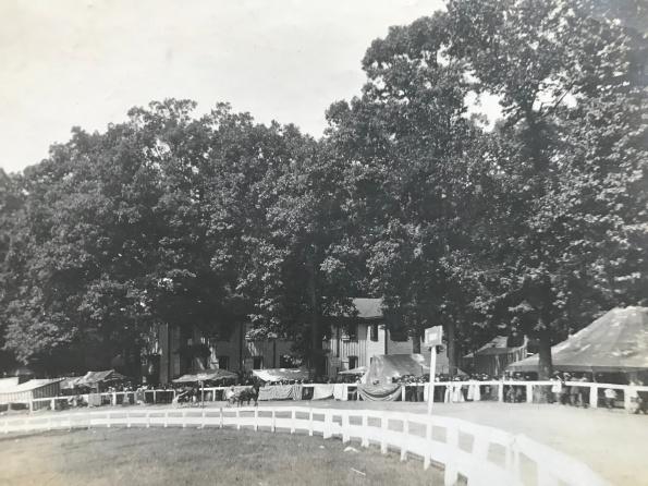 1910 Harness Races