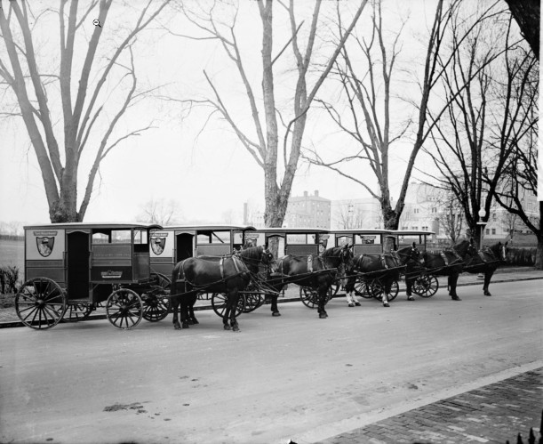 Chevy Chase Dairy delivery wagons, circa 1918-28.