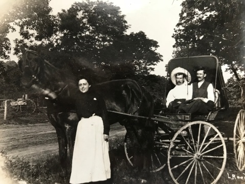 early 20th century horse and buggy