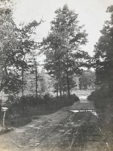 Cedar Lane Bethesda