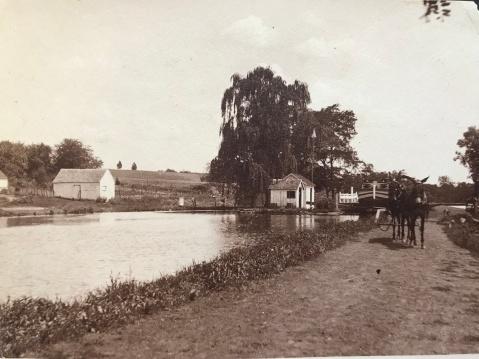 1915 mule-power