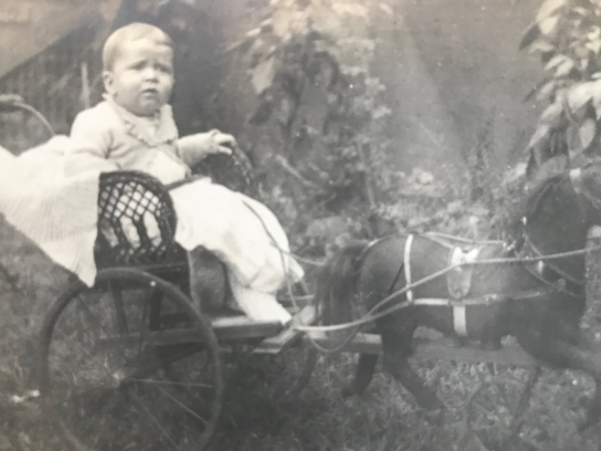Horse drawn baby carriage
