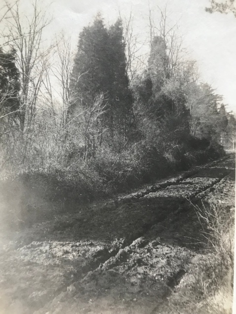Veirs Mill Road 1911
